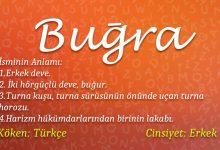 Photo of Buğra İsminin Anlamı Nedir? Buğra İsminin Analizi